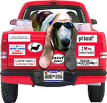 bumperstickers in many designs - find your favorite breed